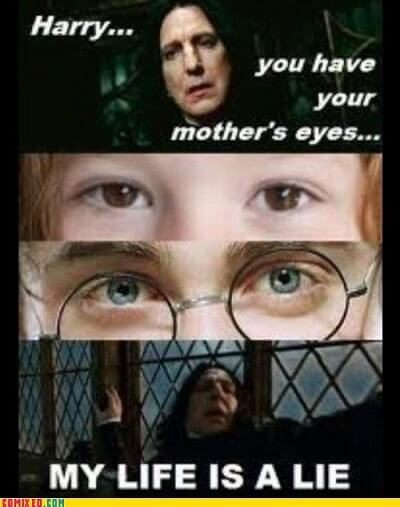 Dirty Harry Potter Memes 11