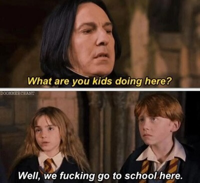 Dirty Harry Potter Memes 15