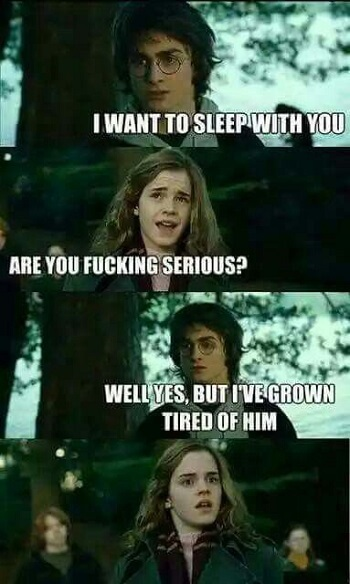 Dirty Harry Potter Memes 22