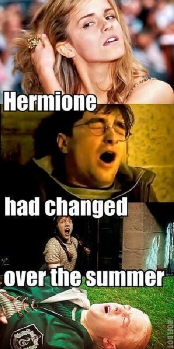 Dirty Harry Potter Memes 23