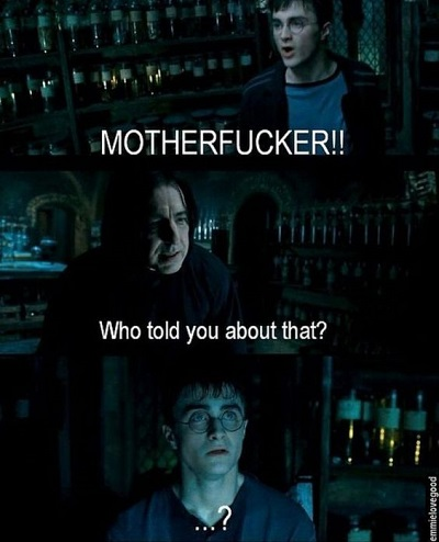 Dirty Harry Potter Memes 9